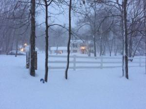 I am snowed in Blizzard 1/23/2016, <a href=